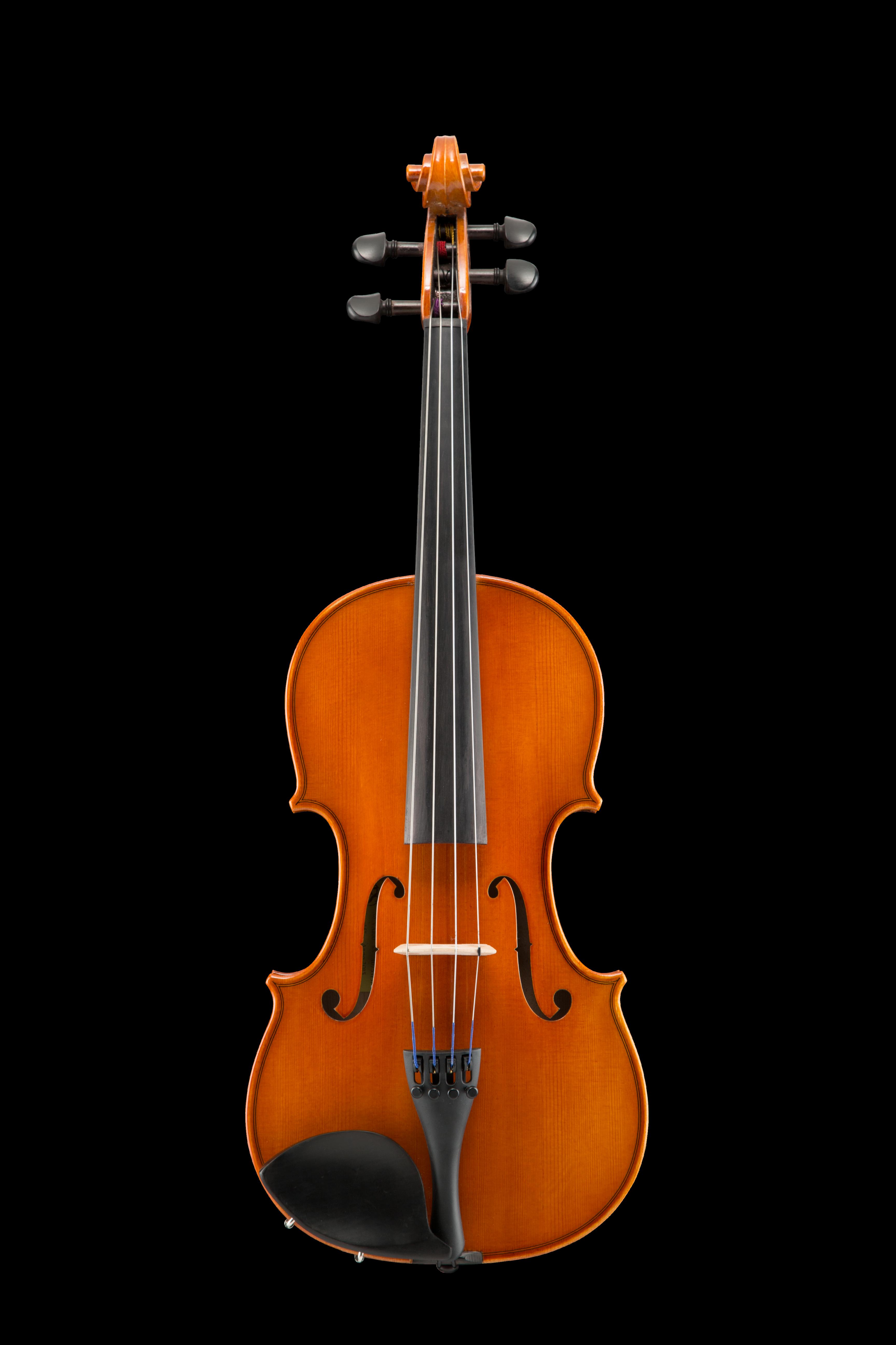"VA100 Samuel Eastman Viola 16.5"" - 11"""