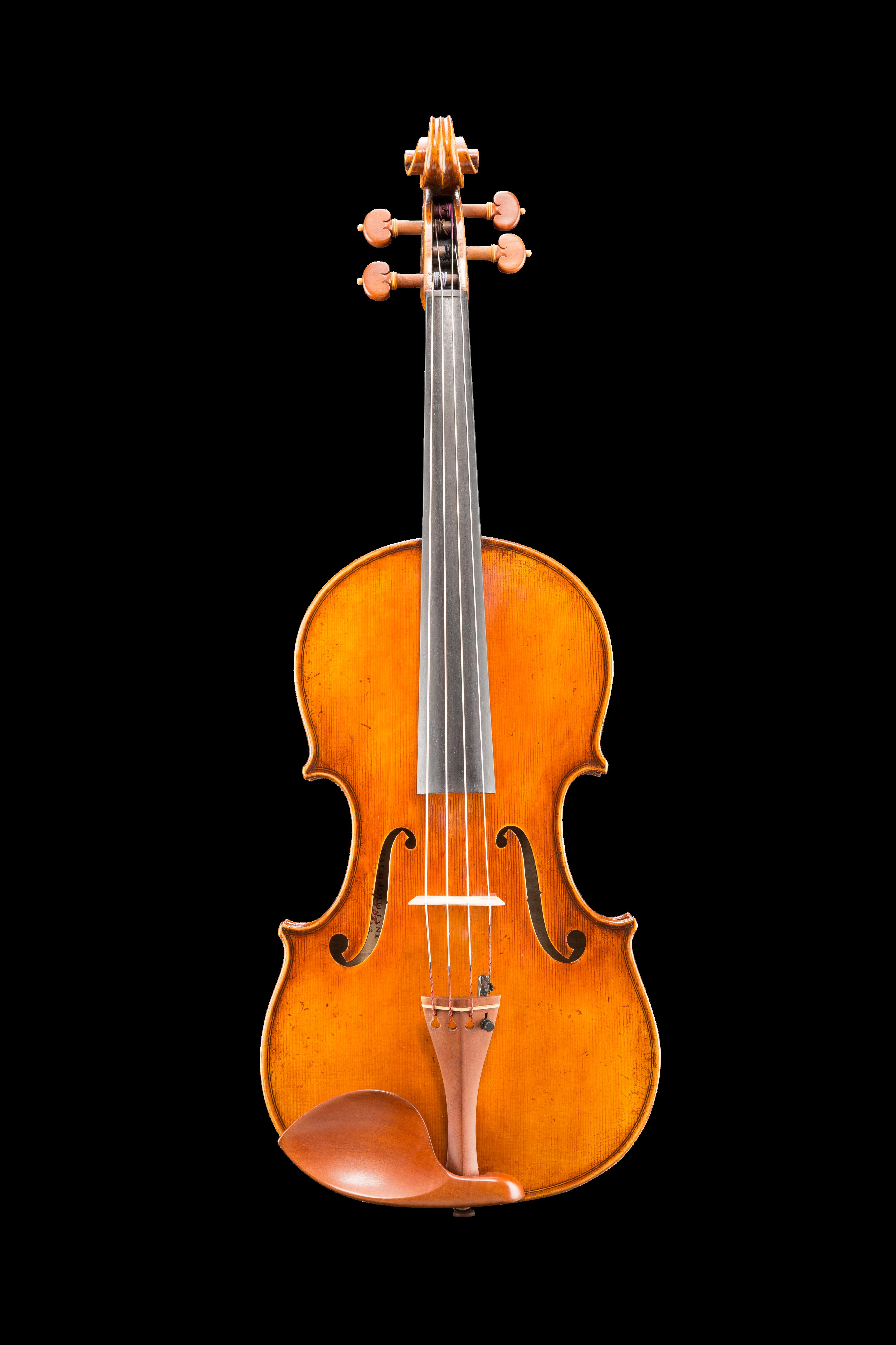 "VA928 Emoliani Viola 16.5"" - 15"""