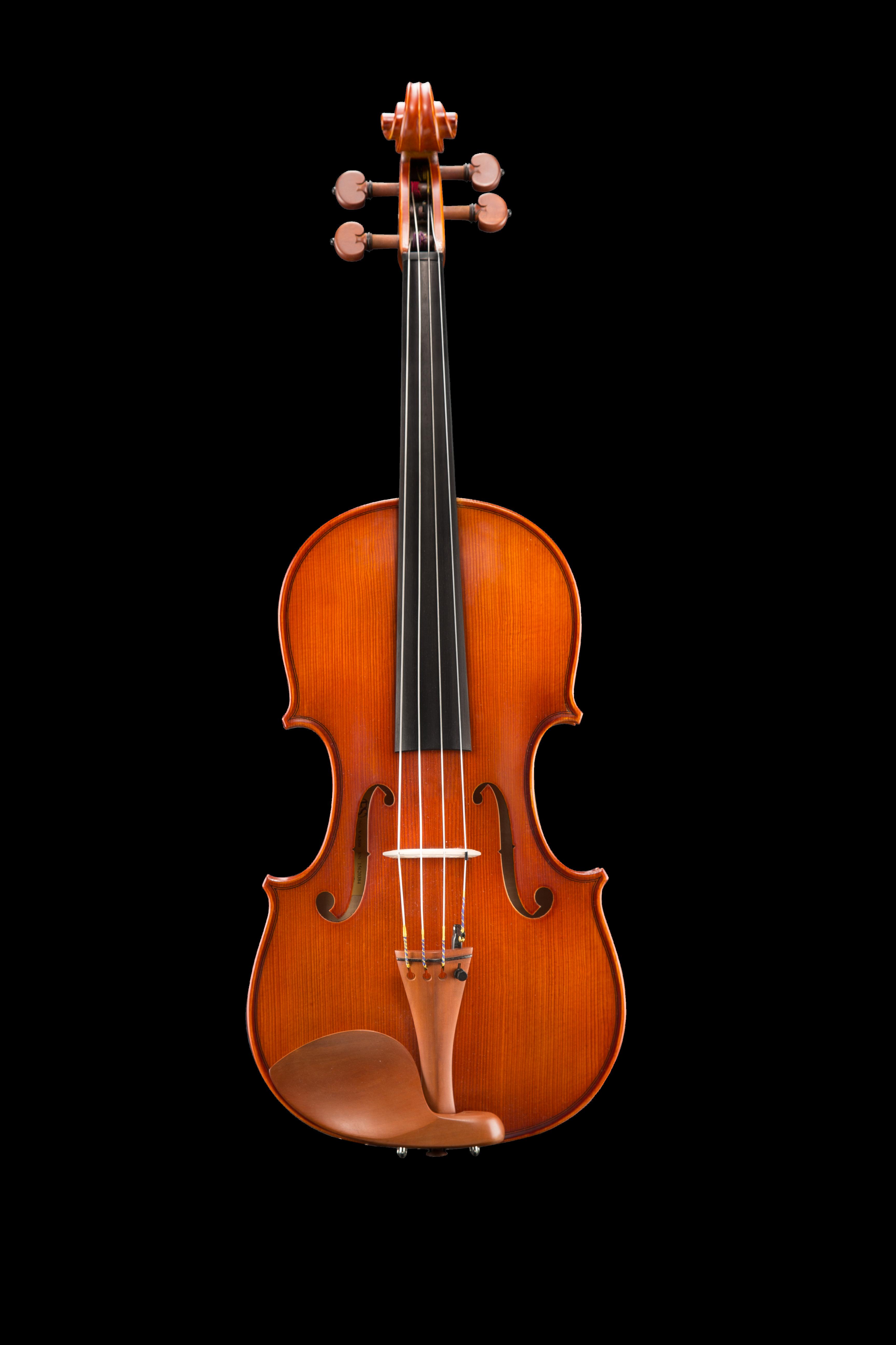 "VA200 Samuel Eastman Viola 16.5"" - 11"""